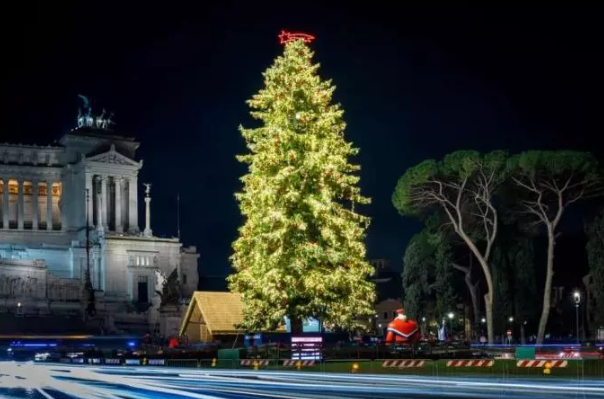 Rome seeks sponsor for Christmas tree