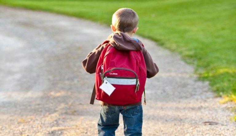School to start in Croatia on Sept 7, school-related public health measures presented