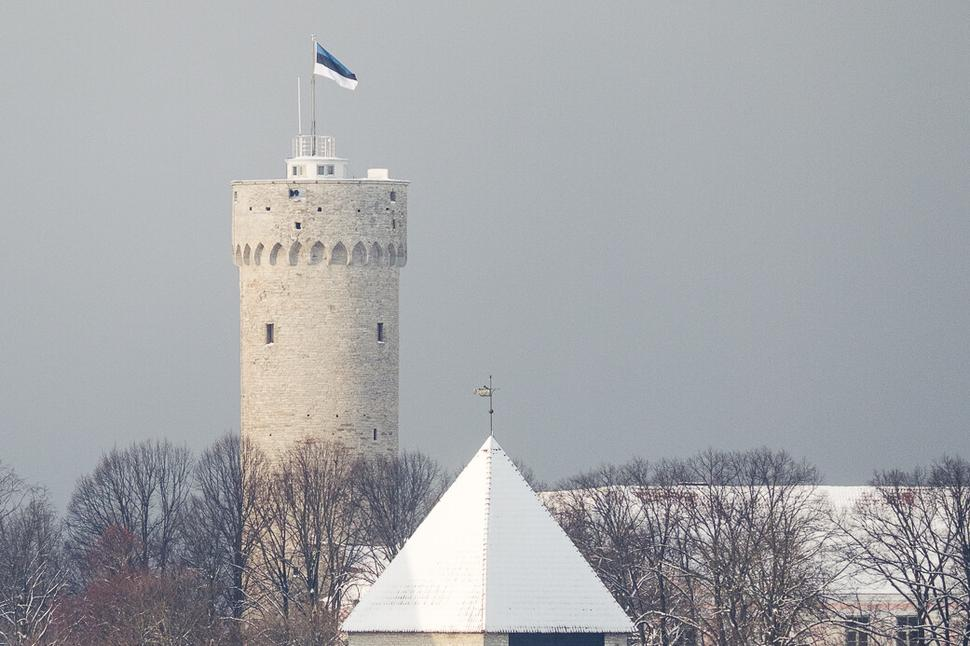 Estonia is getting ready for their Independence Day celebration