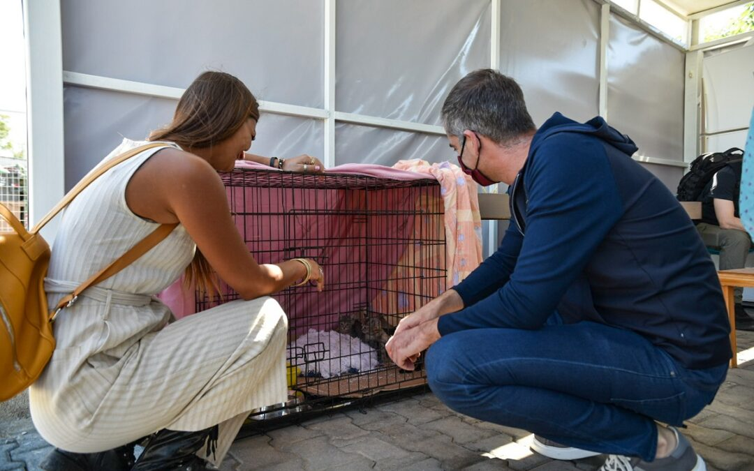 Mayor Bakoyannis took part in World Animal Day 2021